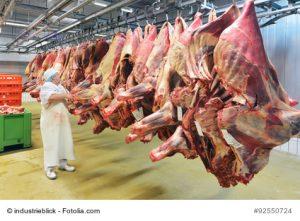 Rinderviertel im Kühlhaus eines Schlachtbetriebs. Bildrechte: Fotolia – industrieblick.